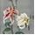 Floral wallpaper menu icon