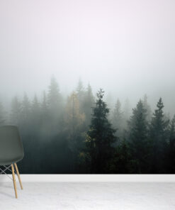 Misty Forest Wallpaper Murals