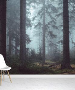 Misty Woodland Wallpaper Mural