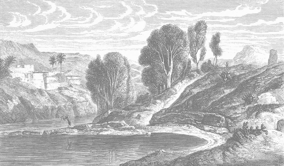 Herring River Wallpaper Mural